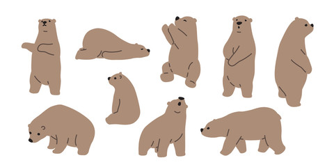 Bear vector polar bear icon logo teddy cartoon character illustration