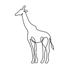 Endless line art illustration of giraffe. Continuous black outline drawing on white background