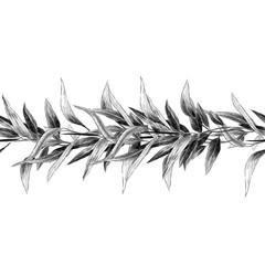 seamless band of twigs with leaves sketch vector graphics monochrome drawing
