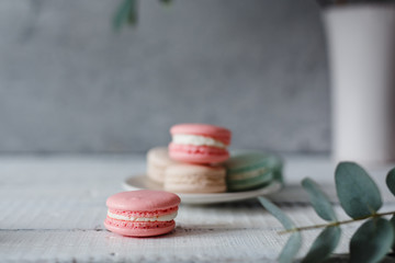 Macaroon. Macaron on gray neutral loft background, stand on plate of different colors. Wooden background.