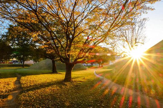 sunset at tumuli park