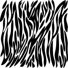 black drawing color zebra _1.eps