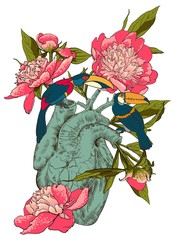 Human heart with flowers