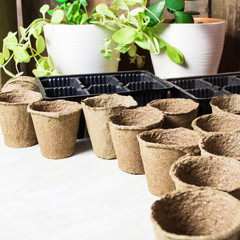 Pots for seeds ready for sprout