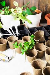 Vertical shot og gardening instruments