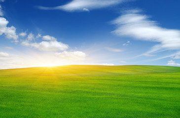 Green field and sun.