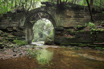ruins of an ancient bridge in the forest