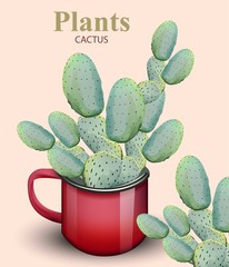 Cactus Plant growing in red pots Vector backgrounds