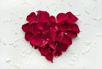 Heart shape made of rose with petals flowers on white background.Flat lay. Valentines,love and wedding concepts