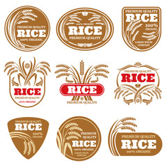 Paddy grain organic rice labels. Healthy food vector logos isolated