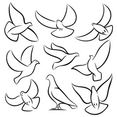 Outline flying doves, white birds and pigeons vector logos. Holy spirit, easter, love and peace design elements