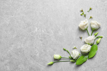 Beautiful white flowers on grey background