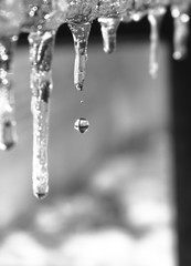 Icicle Water-drop