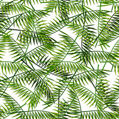 Vector seamless pattern with palm leaves. Summer illustration. Exotic tropical foliage.