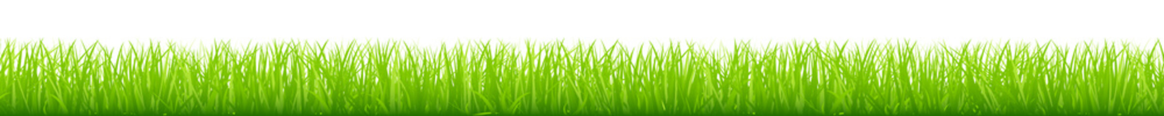 Straight Meadow Banner Green