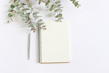 Styled stock photo. Feminine desktop mockup scene with green eucalyptus leaves, ballpoint pen and blank notebook isolated on white background. Empty space. Top view. Picture for blog.