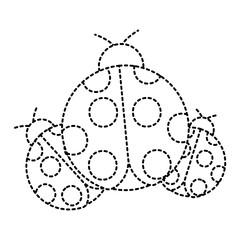ladybugs insect small icon animal