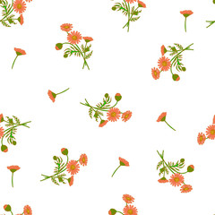 Beautiful Pattern Background with Daisy Flowers Bouquets  for Textile Design, Wallpaper or Web