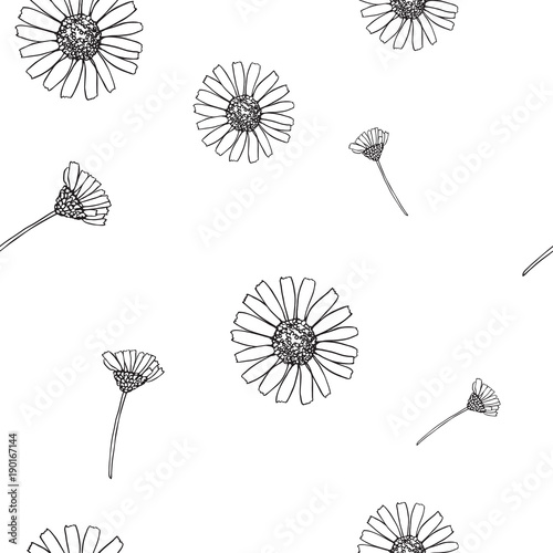 Simple Cute Seamless Pattern With Chamomile Flowers Isolated On White For Textile And Wallpaper Design Or