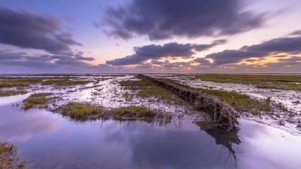 Wall Mural - Wadden sea Tidal marsh at sunset