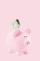 Piggy bank and dollar banknotes on pastel pink background