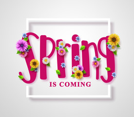 Spring is coming vector banner with text, colorful various flowers, boarder frame and elements in white background for spring seasonal greeting design. Vector illustration.