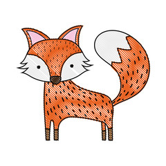 grated cute fox wild animal of the forest