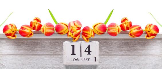 14. Februar, rot gelbe Tulpen zum Valentinstag