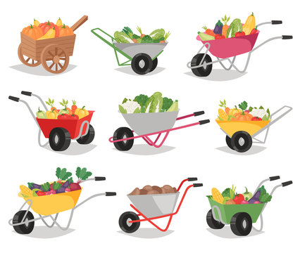 Vegetables in wheelbarrow vector healthy nutrition of vegetably tomato pepper and carrot in wheel barrow for vegetarians eating farming food illustration vegetated set isolated on white background