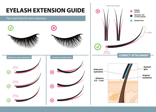 Eyelash extension guide. Tips and tricks for lash extension. Infographic vector illustration. Correct and incorrect attachment. Training poster