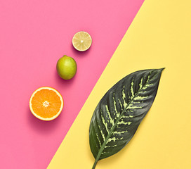 Vegan. Tropical Summer Design Set. Palm Leaf and Fresh Fruits. Trendy Fashion concept. Flat lay. Creative Bright summer Pink Yellow Color. Minimal