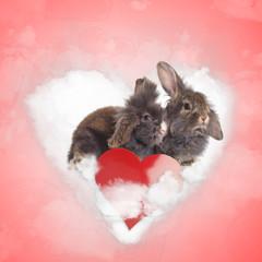 couple of cute bunnies sharing a love cloud