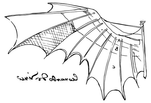 Illustration of Leonardo da Vinci wing sketch