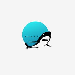 minimal shark logo design.