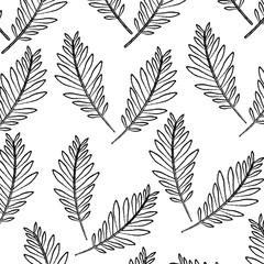 pattern design branch palm leaves nature decoration vector illustration
