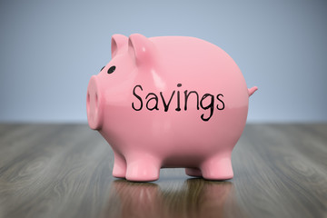 piggy bank with the word savings