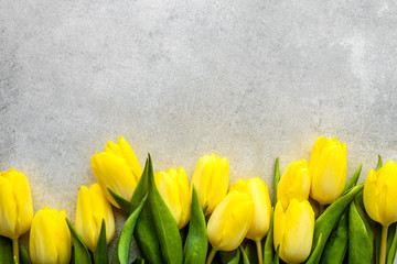 Yellow tulips, spring easter background or anniversary gift for mothers day or card for women's day...