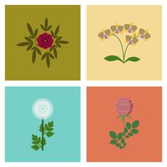 assembly flat Illustrations flower paeonia chrysanthemum orhidaceae rosa