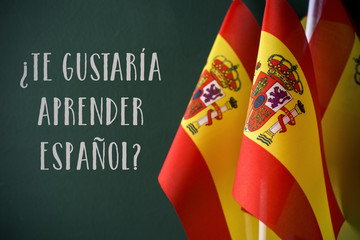 question do you want to learn Spanish, in Spanish
