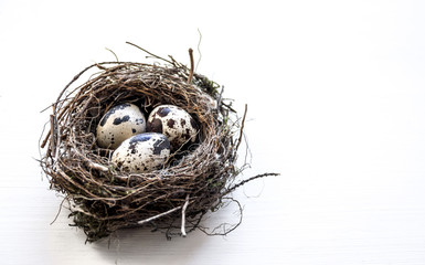 a nest with three quail eggs on a business table