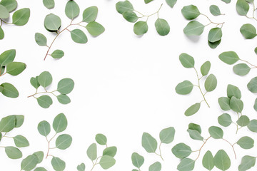 Workplace decorated with green eucalyptus leaves, floral pattern on a white background. The apartment lay, top view. Floral frame. Frame of flowers.