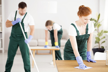 Red-haired charwoman cleaning the table