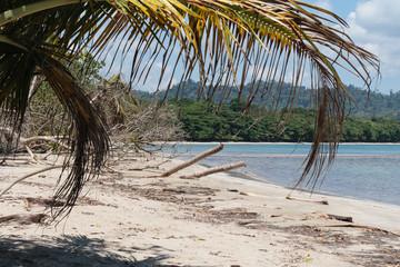 Shady Beach Spot on the Caribbean Coast of Costa Rica