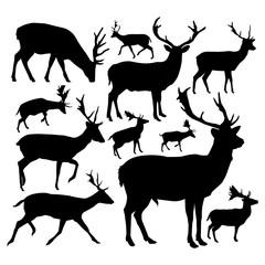 Silhouettes of deers.