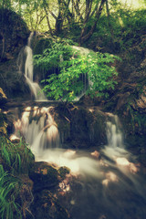 Beautiful waterfall in summer green dark forest, Plitvice Lakes National park, Croatia. Vertical image