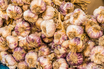 Heap of fresh garlic bulbs in street market. Food background.