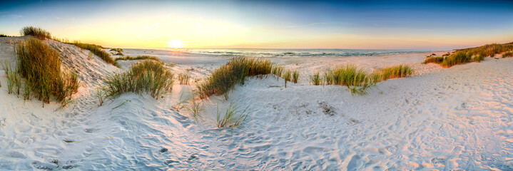 Tuinposter Strand Coast dunes beach sea, panorama