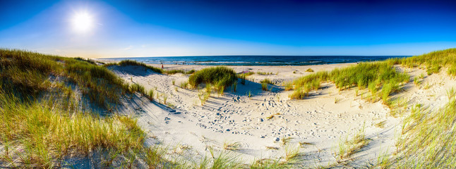 Coast dunes beach sea, panorama