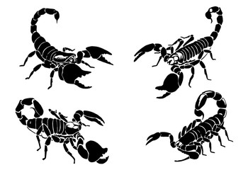 Graphical set of  scorpions isolated on white background,vector illustration for tattoo and printing