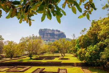 Sigiriya - Lion Rock far behind the leaves  - Lion Rock, Sri lanka